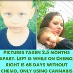 Cannabis Oil Cures 3-Year-Old Boy of Cancer After Doctors Gave Him 48 Hours to Live