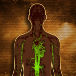 Signs Your Body is Burdened with Toxins