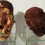 DNA Results For The Elongated Skulls Of Paracas: Part 4 Of 4: European Nobility?
