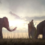 Scientists want to bring Mammoths back to life: It could happen in 2 years !