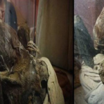 STRANGE MUMMY WITH AN ELONGATED SKULL AND EXTRAORDINARY LONG FINGERS UNEARTHED IN PERU