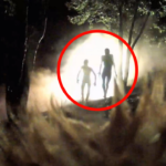 Three Shocking & Credible Alien Abduction Cases