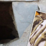 "Never-before seen images inside Tomb in Peru where alleged ""Alien mummies"" were found"