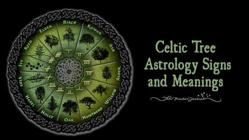 druid horoscope history