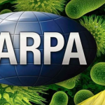 DARPA Plans to Spread Viruses Using Insects Could Be a New Biological Weapon