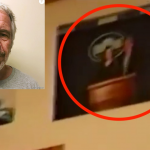 Leaked Video Of Epstein's NY Mansion Shows Jeffrey Epstein at The White House & More
