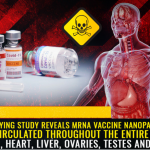 Horrifying Study Reveals mRNA Vaccine Nanoparticles are Circulated Throughout The Entire Body